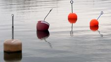 Buoys Stock Images