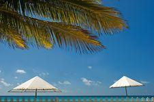 Free Beach Scene Stock Images - 1169864