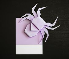 Free Purple Spider Design Origami Stock Photo - 116049870
