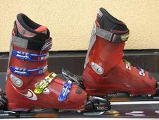 Free Footwear, Shoe, Quad Skates, Sports Equipment Royalty Free Stock Images - 116069069