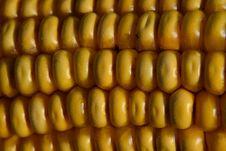 Free Sweet Corn, Corn Kernels, Maize, Food Royalty Free Stock Photos - 116069398