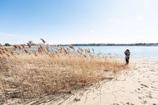 Free Beach With Brown Grass On Sea With Royalty Free Stock Image - 116147556