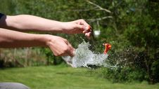 Free Water, Grass, Fun, Plant Royalty Free Stock Photo - 116176345