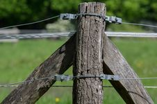 Free Wire Fencing, Grass, Tree, Fence Royalty Free Stock Photography - 116267027