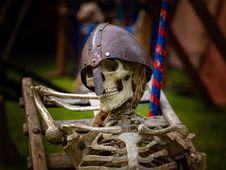 Free Skeleton Royalty Free Stock Photography - 116267127