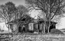Free House, Home, Black And White, Tree Stock Photography - 116268342