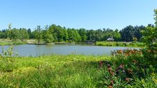 Free Vegetation, Nature, Nature Reserve, Lake Royalty Free Stock Image - 116331266