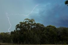 Free Lightning Above The Green Trees Stock Image - 116371391