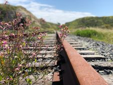Free Shallow Focus Photography Of Railroad Stock Photo - 116371500