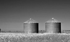 Free Grayscale Photography Of Two Silo On Grass Royalty Free Stock Image - 116433976