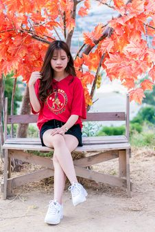 Free Woman Wearing Red V-neck Shirt Sitting Near Red Leafed Tree Stock Photo - 116504460