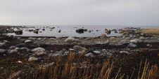 Free View Of Seashore Stock Image - 116504501