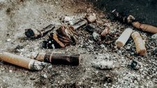 Free Cigarette Buts On Brown Soil Stock Photography - 116504552