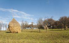 Free Hay Stock Image - 11662981