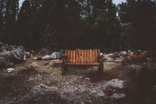 Free Brown Wooden Park Bench Stock Photography - 116695412