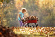 Free Photography Of Child Pushing The Wagon Royalty Free Stock Image - 116695486