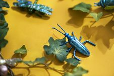 Free Black Beetle Decor On Yellow Surface With Green Leaves Stock Photos - 116695593