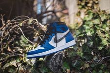 Free Blue And White Air Jordan 1 On Gray Wood Log At Daytime Stock Images - 116695594