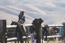 Free Close-up Photo Of Horseman Stock Image - 116695631