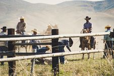 Free Cowboys Riding A Horse Near Gray Wooden Fence Taken During Dayitme Royalty Free Stock Image - 116695636