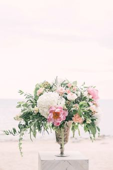 Free Photo Of White And Pink Flowers On Gray Vase Royalty Free Stock Images - 116695649