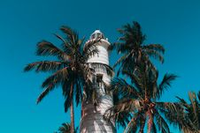 Free Lighthouse And Coconut Trees Stock Image - 116695931