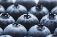 Free Antioxidant, Background, Berry Stock Image - 116706381