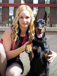 Free Dog, Vertebrate, Dog Breed, Dog Like Mammal Stock Images - 116789774