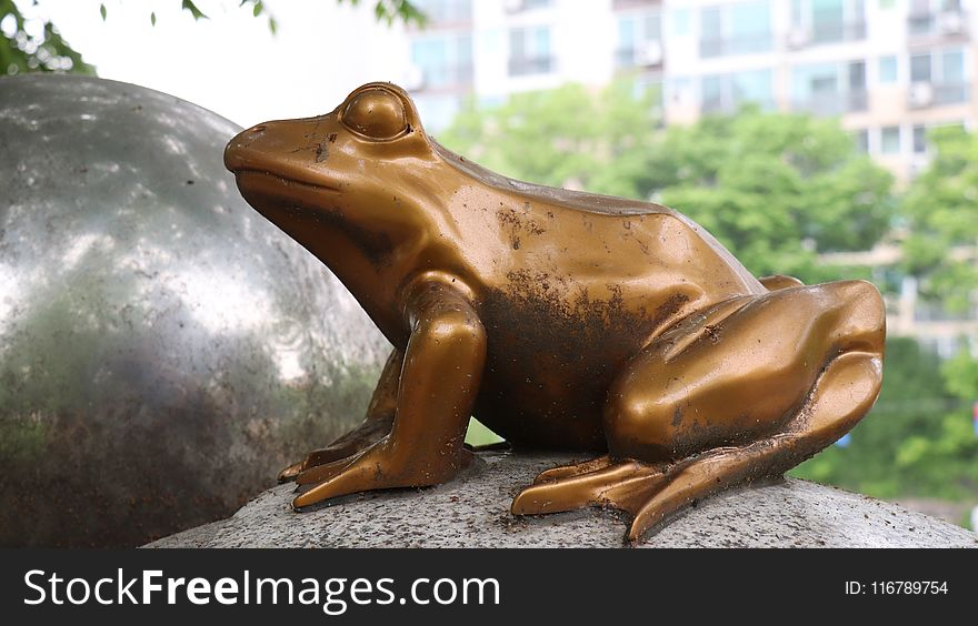 Sculpture, Fauna, Statue, Amphibian