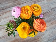Free Flower, Yellow, Flower Arranging, Cut Flowers Royalty Free Stock Images - 116884639