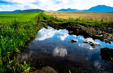 Free Water, Reflection, Nature Reserve, Water Resources Stock Images - 116885224