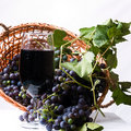 Free Grapes In A Basket Stock Photography - 11691212