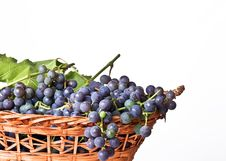 Free Grapes In A Basket Royalty Free Stock Photos - 11691208