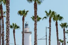 Free White Lighthouse Behind Palm Trees At Daytime Stock Images - 116927694
