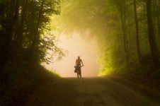 Free Person Riding Bicycle Royalty Free Stock Images - 116927929