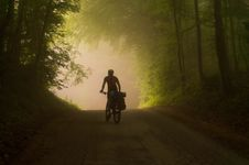 Free Person Riding On Bicycle Near Trees Stock Image - 116927931