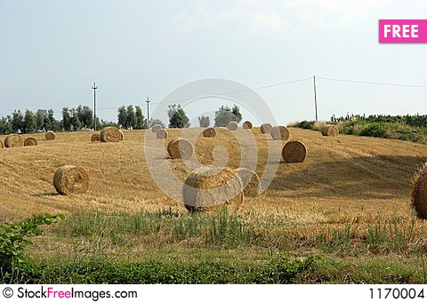 Free Tuscany Countryside Stock Images - 1170004