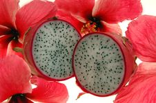 Free Dragon Fruit And Hibiscus Royalty Free Stock Image - 1170536