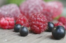 Free Red Raspberry With Jelly Closeup Stock Photo - 1173000
