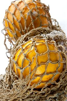 Free Oranges In String-bag Royalty Free Stock Photos - 1173038