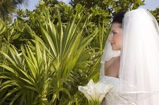 Free Caribbean Beach Wedding - Bride With Bouquet Stock Photography - 1173392