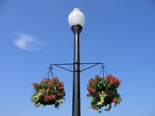 Free Floral Lamppost Royalty Free Stock Photography - 1173697