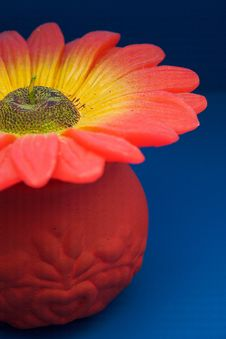 Free Flower Candle Royalty Free Stock Images - 1174009