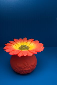 Colored Flower Candle Stock Photography