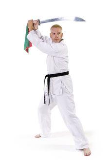 Free Martial Arts Royalty Free Stock Photos - 1177658