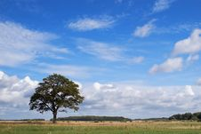 Free Summer Loneliness Royalty Free Stock Photos - 1178248