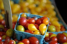 Free Colorful Cherry Tomatoes Royalty Free Stock Photos - 1179338