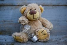 Free Close-Up Photography Of Teddy Bear Near Light Bulb Stock Image - 117112311