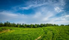 Free Grass Field Near Field Of Trees Royalty Free Stock Photo - 117112575