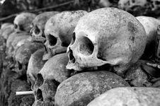 Free Grey Skulls Piled On Ground Royalty Free Stock Photos - 117112648